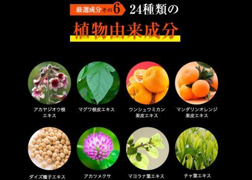 植物由来成分